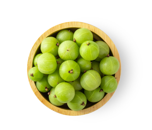 5-gooseberry-fruit