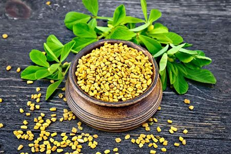 fenugreek-uses-side-effects-benefits007