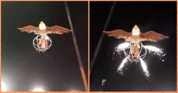 Indian Couple Flies Into Their Wedding In A Bird Cage And It's Outrageous