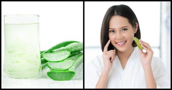 Benefits Of Aloe Vera In Marathi