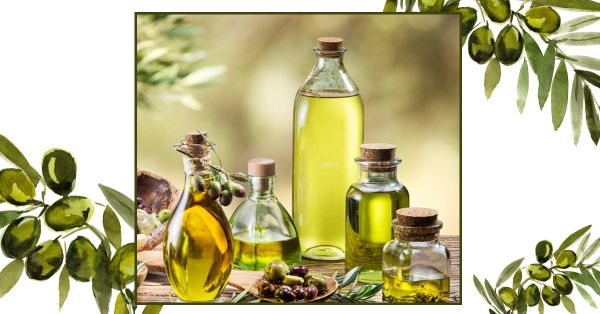 Olive Oil Benefits In Marathi