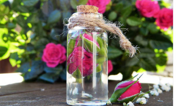 All Things Rose: Everything You Need To Know About Rose Water