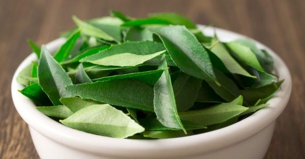 Curry Leaves Benefits In Marathi