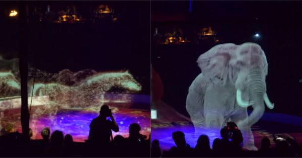 No More Cruelty: This German Circus Is Using Beautiful Holograms Instead Of Real Animals