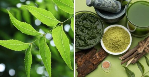 Benefits Of Neem In Marathi