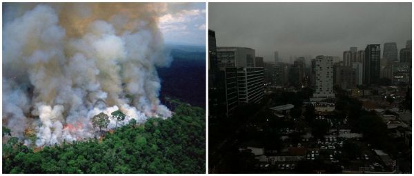 #PrayForTheAmazon: Everything You Need To Know About The Intense Forest Fires In Brazil