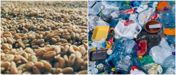 Exchange Food Grains For Plastic, Gurugram's New Initiative To Save Environment
