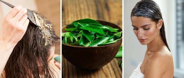 Curry Leaves For Hair Mask In Marathi