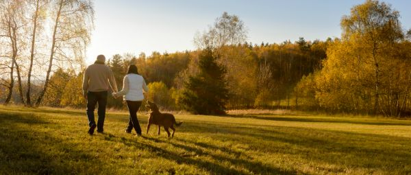 Bring Home A Furry Friend: Survey Claims Couples Who Raise A Dog Together Are Happier