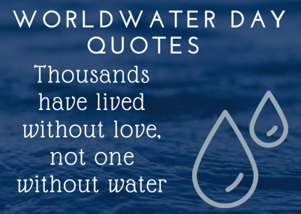 quotes on water conservation