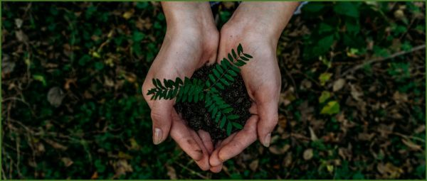Heal The World: Earth Day Quotes And Slogans For A Happier Tomorrow