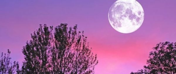 Super Pink Moon 2020: Watch The Biggest Moon Tonight To Calm Your Lockdown Anxiety