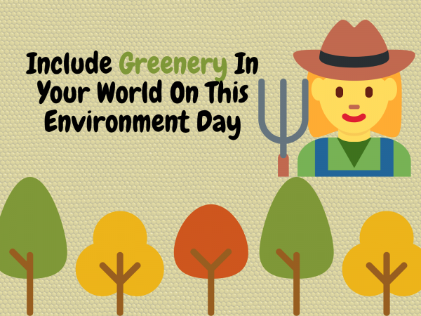 Greenery On Environment Day 2020