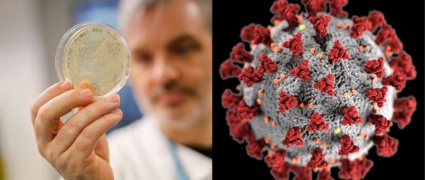 Coronavirus Is Mutating Into Newer, More Contagious Strain & Here's Why It's Bad News