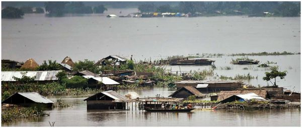 Nature's Fury: Floods In Assam Displace Lakhs, Ravage Crops And Affect Domestic Animals