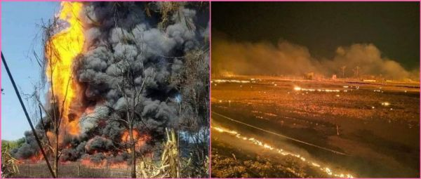 'Chernobyl Like Scenes': Terrifying Visuals Show How A Massive Fire Is Raging In Assam