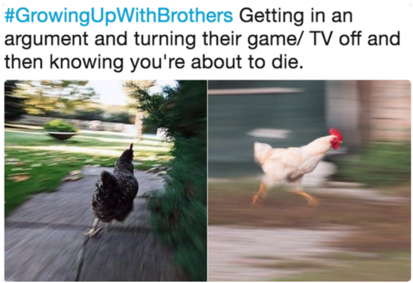 competing with your brother memes