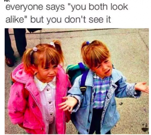 twinning memes for sisters