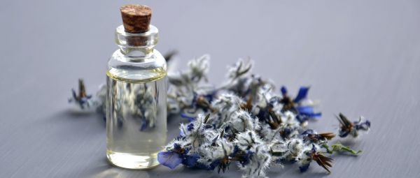 Healthy Scalp, Calm Mind: 8 Amazing Benefits Of Lavender Oil For Your Hair!