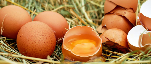 Egg-ceptionally Awesome: The Many Beauty Benefits Of Eggs For Your Hair & Skin
