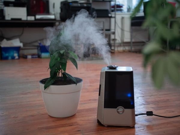 humidifier for skin and hair