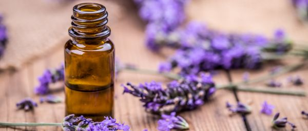 Lavender Oil Is The Bedside Magic Potion You Need RN And Here's Why!