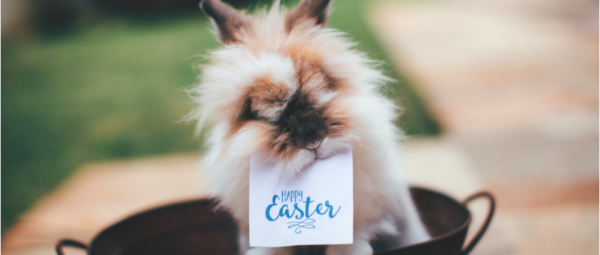 ideas to celebrate easter