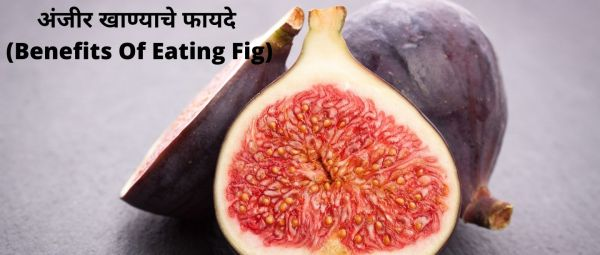 Anjeer Benefits In Marathi