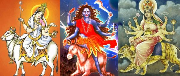 nine faces of maa durga and their vehicle