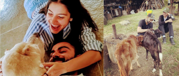 Anushka Sharma Shares Some Priceless 2020 Moments With Virat Kohli & They're 'Pawsome'!