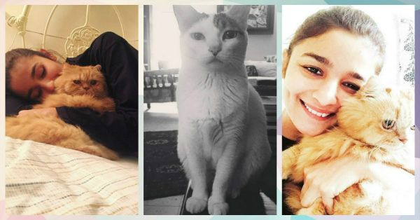 5 Times Alia Bhatt Made Us Love… CATS!