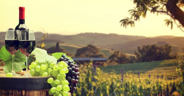 6 Beautiful Vineyards In The World For Your 'Grape' Escape!