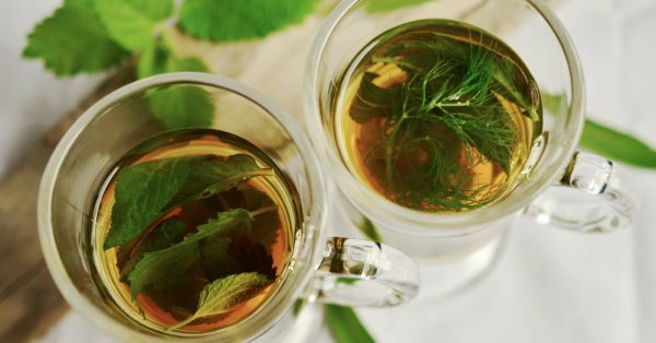 Green Tea Is One Of The Most Underappreciated Drinks And Here's Why