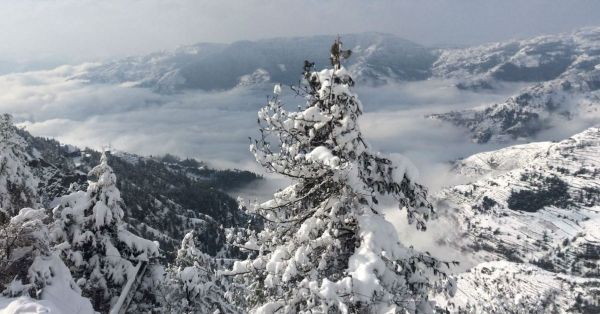 Shimla Is Calling You For The Long Weekend And Here's Why!