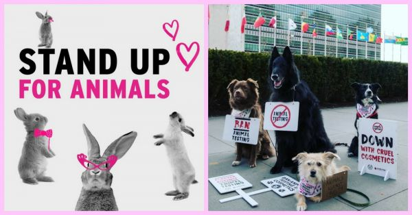 This Campaign To Ban Animal Testing Will Melt Your Heart!