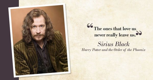 Harry Potter Quotes Thatll Make You Want To Reread The Series Popxo
