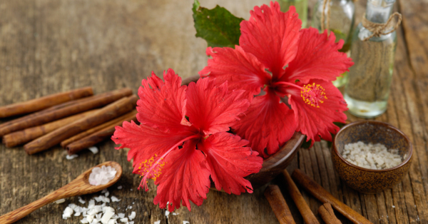 #TropicalParadise: Everything You Need To Know About Hibiscus Oil