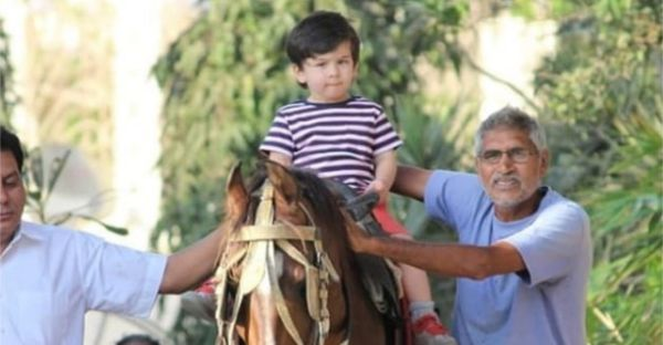 Taimur Goes On A Horse-Riding Play Date, Looks Like The Most Handsome Prince EVER!