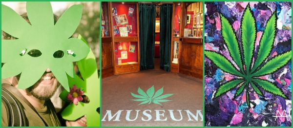 Get, Set, Rolling... Jaipur Is All Set To Welcome Its First 'Weed Museum'