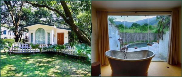 Love Nature, Wildlife And Luxury? Stay At These 6 Resorts In Jim Corbett