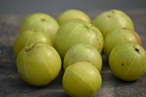 amla for healthy skin